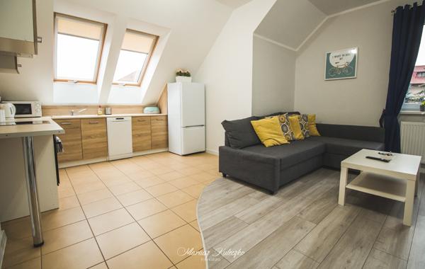 Apartament z jedną sypialnią 4